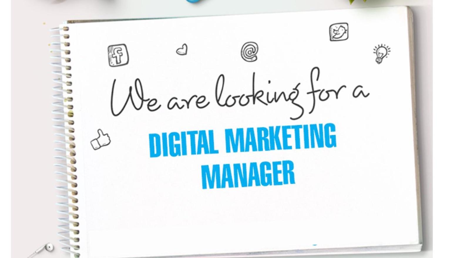 Digital Marketing Manager at undefined